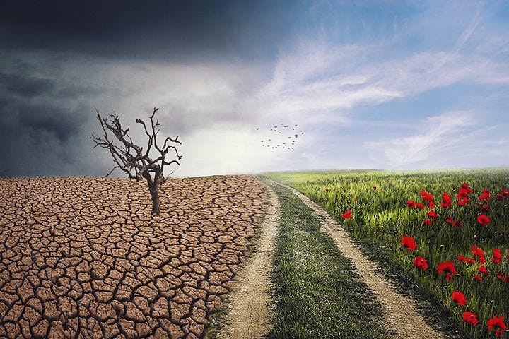 Climate Change - Threats, Resilience, and Adaptation image