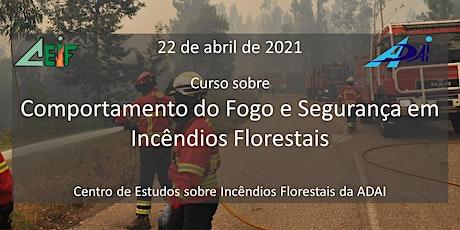 Curso sobre Comportamento do Fogo e Segurança em Incêndios Florestais ingressos