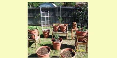 Mini-gardening: growing Vegetables in Containers tickets