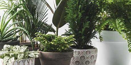 Keeping Houseplants and Their Gardeners Happy tickets