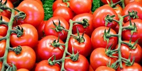 Fresh Tomato Launch tickets