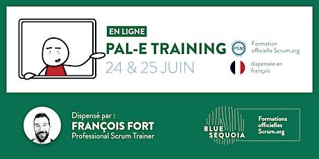 Professional Agile Leadership Essentials™ (PAL-E) - Français tickets