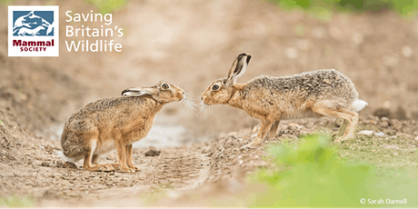 Mammal Society's 66th Spring Conference tickets