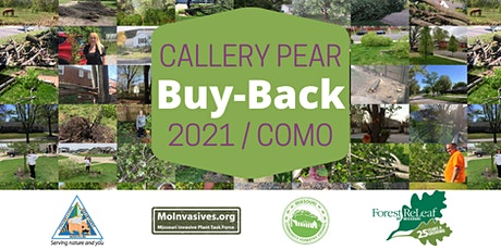 SOLD OUT: Callery Pear Buy-Back in Columbia tickets