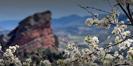 Suicide in Colorado:A Discussion on Prevention, Support, Stigma & Impact tickets