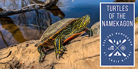 Turtles of the Namekagon Paddle tickets