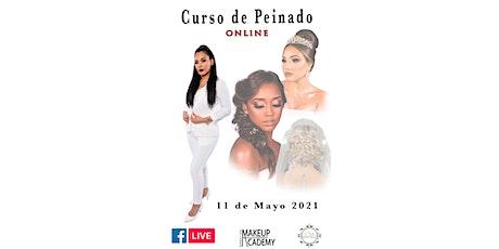 CURSO DE PEINADOS ONLINE (16 CLASES) entradas