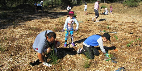 Community Tree Planting at Peter Miller Park tickets