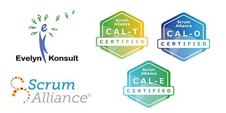 国际Scrum联盟敏捷领导力认证课程 (CAL-E, CAL-T, CAL-O 三个认证一个课程) tickets