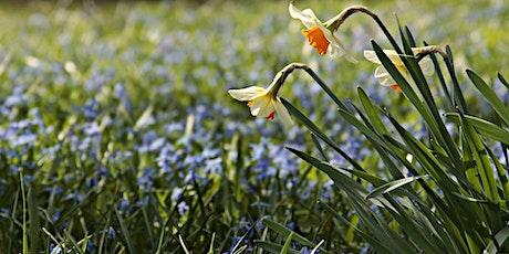 Frühling is - Wir lernen die Wiese kennen Tickets