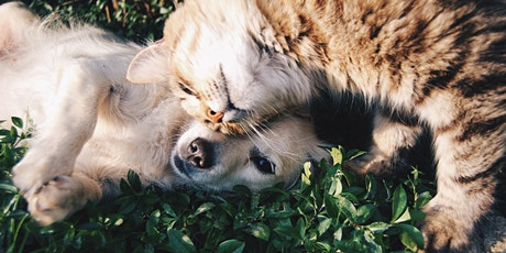 Sharing Poetry: Cats, dogs and other pets Tickets