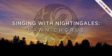 Singing With Nightingales: Dawn Chorus Tickets