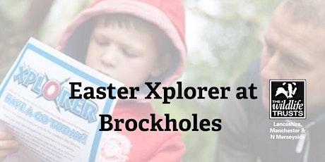 Easter Xplorer Challenge at Brockholes - Sunday 11 April tickets