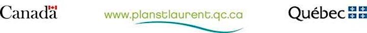 Image de Forum Saint-Laurent 2021 - La science au service des décideurs