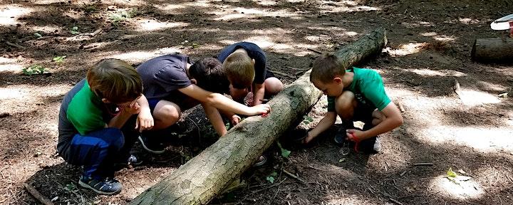 River Adventures Summer Camp - Water Explorers image