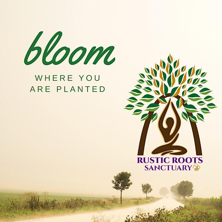 Rustic Roots Sanctuary Spring Celebration image