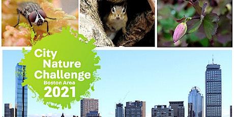 Biodiversity Where You Are: Boston Area City Nature Challenge tickets