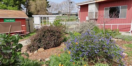Vallejo Garden Tour: Loma Vista Farm Demonstration Food Forest tickets