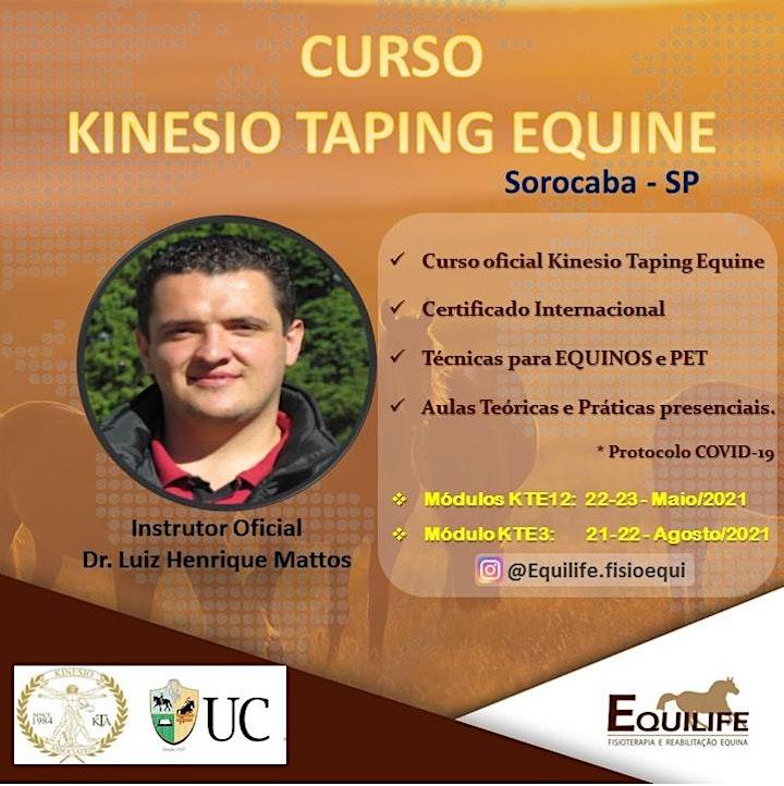 Imagem do evento CURSO KINESIO TAPING EQUINE