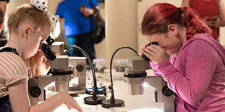 Autism-friendly morning: Wonders of the South Australian Museum tickets