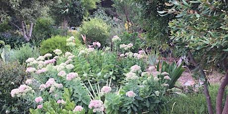 An Enchanted Garden tickets