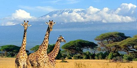Ramadan Virtual Safari of the Serengeti (Tanzania) tickets