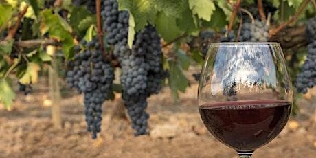 CCNS Virtual Wine Tasting- A Taste of Spain tickets