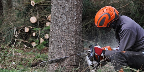 Emergency First Aid 1 day course including Forestry First Aid +F (RQF) tickets