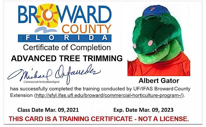 Imagen de EN PERSONA! Tree Trimmer Certification: BASIC SPANISH/NIVEL BÁSICO-ESPAÑOL
