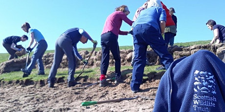 The importance of Local Groups for the Scottish Wildlife Trust tickets