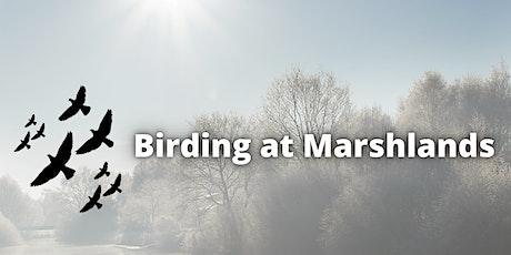 Birding at Marshlands tickets
