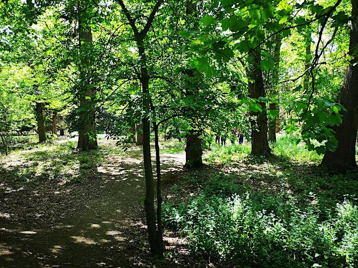 Explore Manor Park image