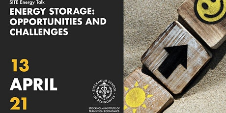 Energy talk   Energy storage: Opportunities and challenges tickets