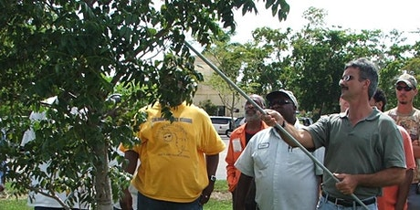 VIRTUAL CLASS - Tree Trimmer Certification: ADVANCED ENGLISH tickets