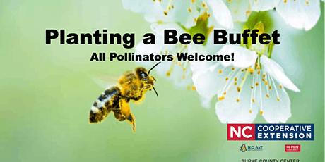 Planting a Bee Buffet tickets