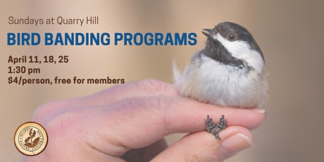Sundays at Quarry Hill - April is for the Birds! tickets