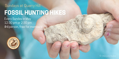 Sundays at Quarry Hill -  Fossil Hunting Hike tickets