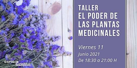 Taller: El poder de las plantas medicinales tickets