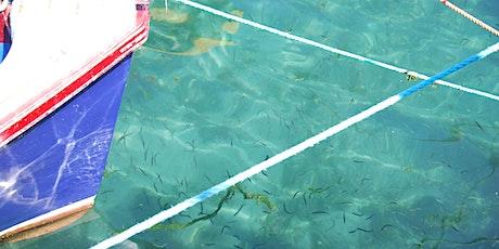 Blue Extinction: Biodiversity Loss in Aquatic Environments biglietti
