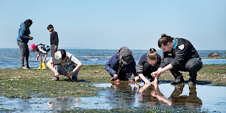 Junior Ranger Beach Treasure Hunt- Point Cooke Marine Sanctuary tickets