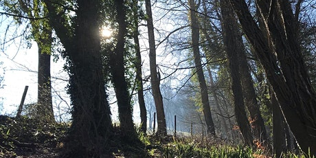 Wake up to Spring - Introduction to Forest Bathing tickets