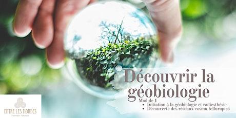 Initiation à la géobiologie et radiesthésie billets