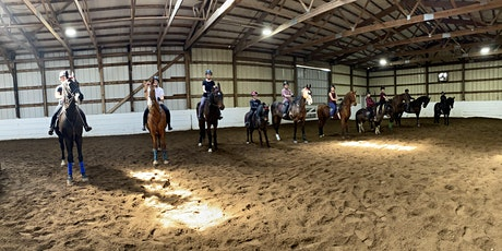 Tiny Horse Lovers Camp- 3 Day, 3 Hour Camp- Week 1 tickets
