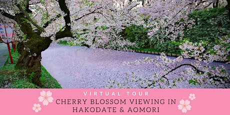 Japan - Virtual Cherry Blossom Viewing in Hakodate & Aomori Tour tickets