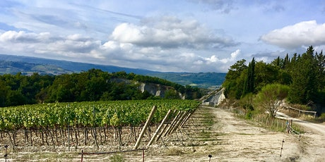 Great White Wines of Italy tickets