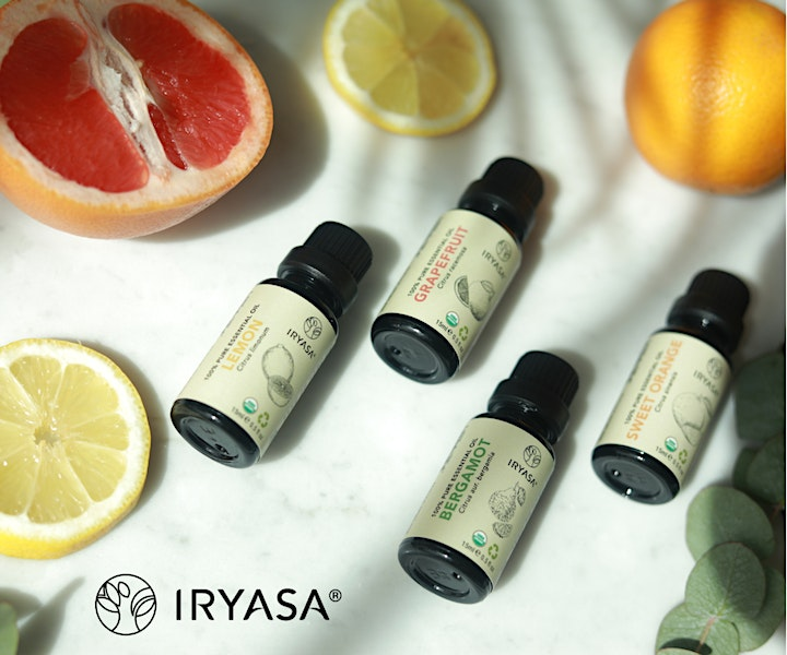 Aromatherapy - the Essentials by The Green Collective image