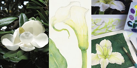 Painting White Flowers: Watercolour Workshop tickets