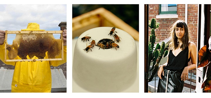Mud Talks 03: The Magic and Art of Beekeeping with Honey Fingers image