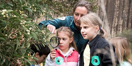 Junior Rangers Nature Navigators - Lysterfield Park tickets