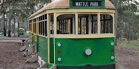 Junior Rangers The Great Wattle Treasure Hunt - Wattle Park tickets
